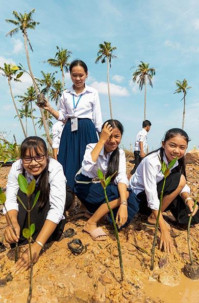 UNDP-Cambodia-2020-planting-mangroves