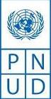 Footer PNUD Logo